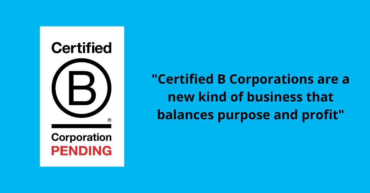 Sink Spinner is an official Pending B-Corp!