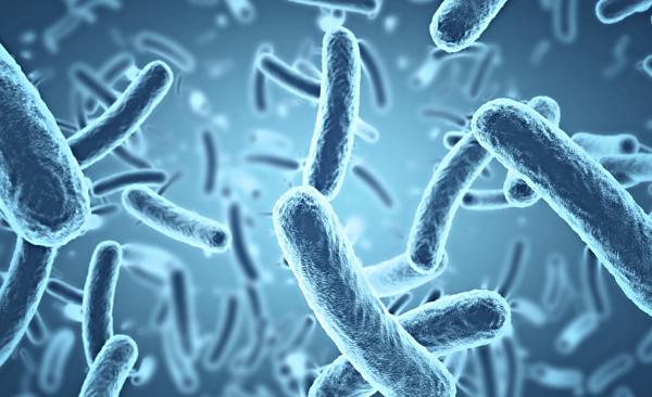 microscopic bacteria blue